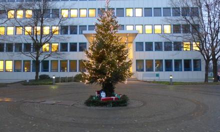 Weihnachtsbaum mit 3360 LED-Lichtern
