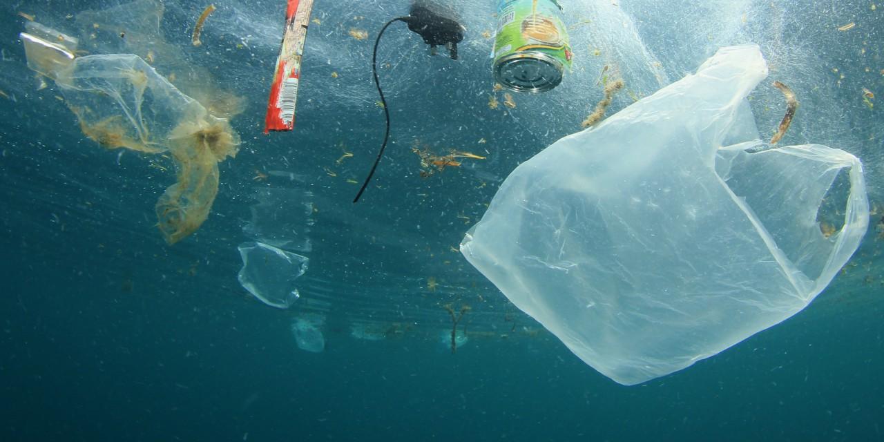 Anhörung im Landtag: Mikroplastik reduzieren