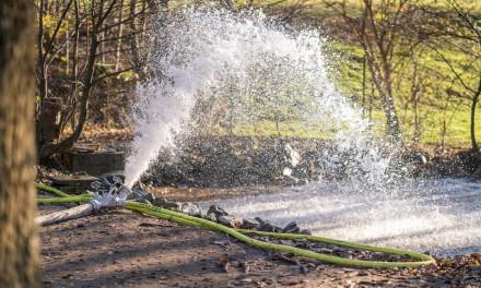 Team blau-grün hilft: Wasser für kranke Vögel
