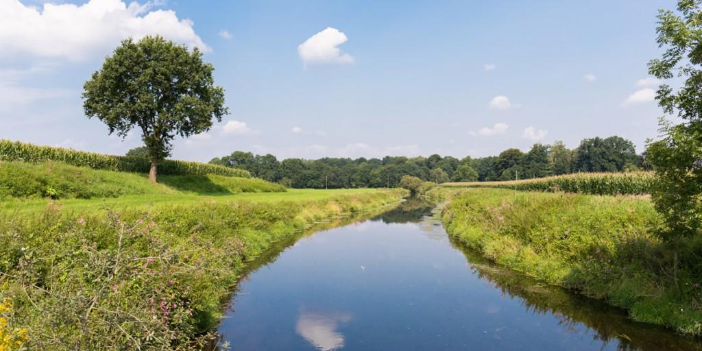 Tag der Daseinsvorsorge: Gelsenwasser setzt sich vehement für den Umwelt- und Klimaschutz sein!