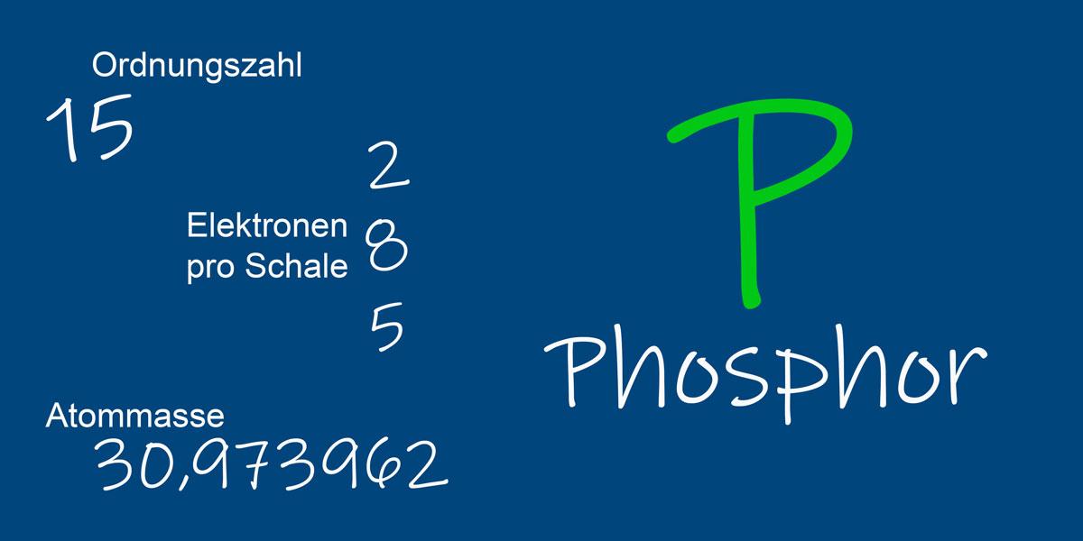 Phosphor-Recycling aus Klärschlamm wichtig für klimaneutrale Kreislaufwirtschaft