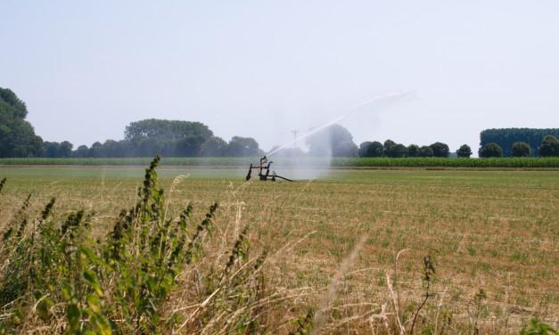 Umweltpolitiker zum Landeswassergesetz