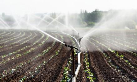 Umweltpolitikerin Bianca Winkelmann zum Landeswassergesetz