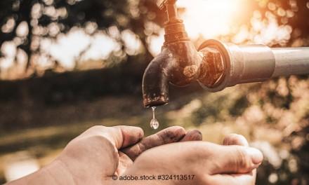 Unsere wertvollste Ressource: Wir müssen Wasser wieder wertschätzen